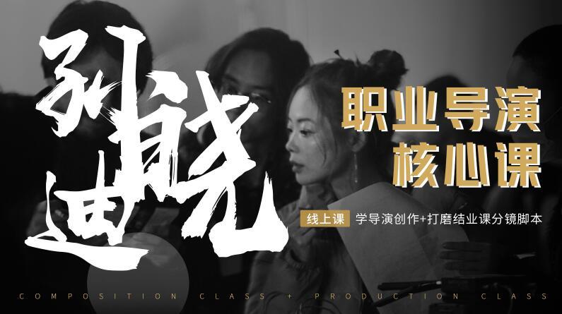 孙晓迪·职业导演核心课,价值6299元