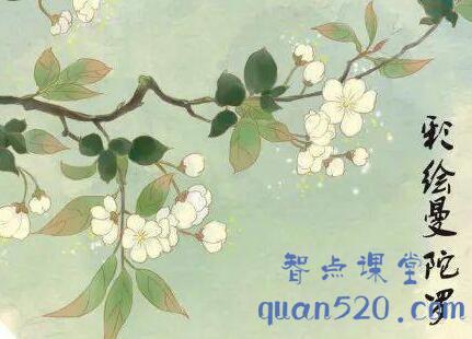 严虎·彩绘曼陀罗,26讲理论+实践